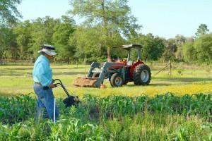 Garten, Traktor